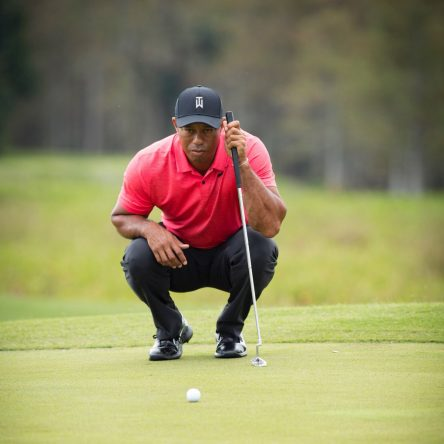 Tiger Woods © Bridgestone Golf