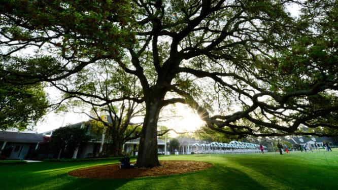 El Oak Tree del Augusta National Golf Club